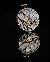 Time to reflect (Hugh Stanton) Tags: jewel cog time watch
