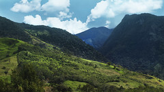 _MG_9846 (noemislee) Tags: peru oxapampa noemislee noemi slee 2018 jungle selva sunny nature naturaleza travel viaje adventure greenery green tourism sky skyporn cielo nubes clouds vibrant vibrance wilderness landscape bluesky turquoise