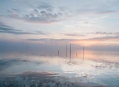 trasimeno_lago_03 (Marco Tuteri) Tags: lago trasimeno tramonto