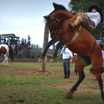 Filipe Simões thumbnail