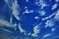 20180624_DP0Q0570 (NAMARA EXPRESS) Tags: landscape nature sky cloud daytime summer fine outdoor color blue foveonclassicblue toyonaka osaka japan spp spp653 foveon x3 sigma dp0 quattro wide ultrawide superwide namaraexp