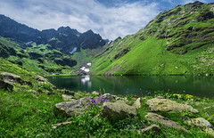 Eye of the Mountain (Maxim Shelkov) Tags: lake mountains mountainside mountain blue reflection water travel travelling flowers landscape photography hill outdoor abkhazia green grass trip sky summer morning eye tourism tour snow view landmark mzy hiking trekking cloud clouds