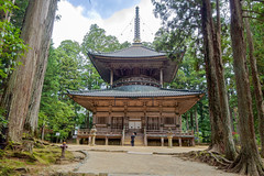 Le moine et la Pagode... DANJO-GARAN..Koyasan (geolis06) Tags: geolis06 asia asie japan japon 日本 2017 koyasan montkoya kôbôdaïshi kukai shingon bouddhisme bouddha buddhism religion mausoléee mausoleumofkôbôdaishi danjogaran garan konpondaitô pagode pagoda moine monk