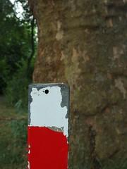 Hamster Rorschach (mkorsakov) Tags: dortmund nordstadt hafen poller bollard rorschach hamster rot red weiss white