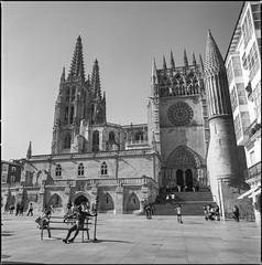 Catedral de Burgos (EiNkEl) Tags: verde cathedral hasselblad mediumformat formatomedio film pelicula analogico analogic