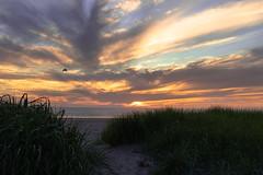 Beach Sunset (twahl8) Tags: beach sand seaside oregon kyte sun sunset clouds grass water waves landscape canon ocean