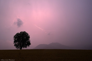 Alone under the storm