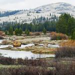 Tuolumne Meadow, Yosemite NP, CA 2015 thumbnail