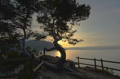 20018_06_30 (kbl phtogaphy) Tags: amanecer sol naturaleza natura naturalesa nikon5100 nikon samyang10mm samyang paisaje airelibre agua mar playa costa albada catalunya