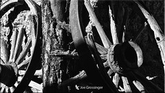 Wagon Wheels (Joe Grossinger) Tags: wagon wheels old historic bw wood joe grossinger