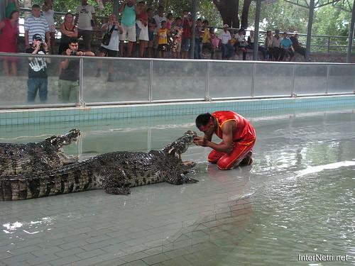В пащу крокодилу Паттайя Таїланд Thailand InterNetri 41