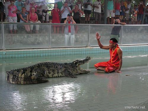 В пащу крокодилу Паттайя Таїланд Thailand InterNetri 20