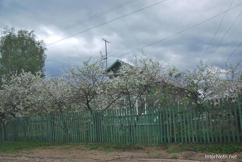 Петровське-Ростов-Борисоглібський  InterNetri 0210