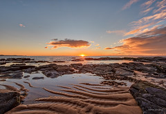 Sand serpents (JustAddVignette) Tags: australia beach clouds collaroy dawn headland landscapes lowtide newsouthwales northernbeaches ocean reflections rocks sand sea seascape seawater seaweed sky sun sunrays sunrise sydney water waves