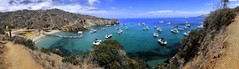Catalina Cove (/\ltus) Tags: boyscouts bsa bsascouts catalinaisland boats yachts ocean iphone iphonex pano panoramic ccv campcherryvalley cove hiking california losangelescounty island socal southerncalifornia