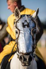Mittelalterspektakel Bern (endorphin75) Tags: 2018 age allmend bern dark horse markt medieval mittelalter mittelalterspektakel pferd schweiz spektakel switzerland turnei mas