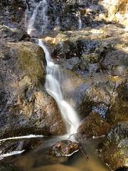 Goomoolara Falls ([S u m m i t] s c a p e) Tags: springbrooknationalpark hiking trailrunning waterfall springbrook queensland australia