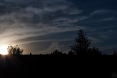 Sunset / @ Dresden / 2018-07-03 (astrofreak81) Tags: sunset dresden clouds sky birds sonnenuntergang wolken