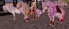Shetland Shine and Sparkle! (honeyheart1) Tags: horse pony shetland realhorse eliteequestrian sl secondlife independenceday 4th july