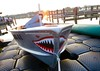 Sharknado! Excelsior (minnetonkafelix) Tags: sharknado teeth fishing boat