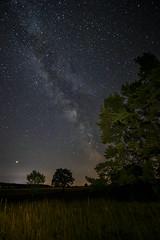 Just Billions of Stars (M-Z-Photo) Tags: colmberg bayern deutschland de langzeitbelichtung milchstrase galaxie nachtaufnahme landschaft sternenhimmel himmel natur bäume