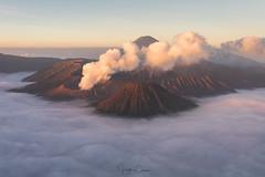 Gunung Bromo (Hilton Chen) Tags: serumi seaofclouds foggy smoke mountbromo volcanoes sunrise misty landscape indonesia bukat java puspo jawatimur id