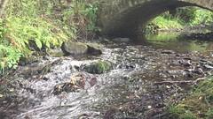 IMG_1030 (ulf.springer) Tags: peak district grindleford froggatt stoney middleton eyam leadmill