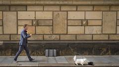 [Explore 2018-07-20] Dresden - Street Performance (stefanfricke) Tags: dresden saxony streetart dog man sony ilce7rm2 sel1635z