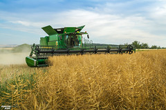 Colza Harvest | 2019 JOHN DEERE S785i Combine Harvester (martin_king.photo) Tags: harvest harvest2018 ernte 2018harvestseason combineharvester harvesttime summer work tschechischerepublik powerfull martinkingphoto machines strong agricultural greatday great czechrepublic welovefarming agriculturalmachinery farm day working modernagriculture landwirtschaft moisson machine machinery farmworld farmlife tschechische republik power dynastyphotography lukaskralphotocz fans place clouds blue yellow gold golden eos country lens rural camera outdoors outdoor colza rape raps canola cloudy sky photo canon combine harvester allnew brandnew new neu soucytracs tracs view
