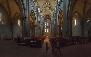 Cathédrale Saint-Pierre Genève . Switzerland.  Izakigur  12.05.18, 11:53:19 No. 8721 22 23 24 25.