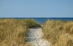 Ostsee bei Sehlendorf (towytopper) Tags: ostsee sommer meer dühne strand weg strandhafer wasser himmel landschaft urlaub
