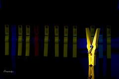 Momentos de soledad o/y Se me fue la pinza... (Anavicor) Tags: clothespeg peg pinza pinzadelaropa pinceàlinge solitude idiom frasehecha semefuelapinza soledad joke broma humor sonrisa nikon d5300 tamron color yellow anavicor anavillar villarcorreroana