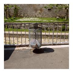 22 (trash can) (ngbrx) Tags: yverdonlesbains vaud switzerland waadt romandie schweiz suisse svizzera gitter trash can mülleimer yverdon