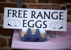 Free Range Eggs at Malton Food Festival 2018 (Tony Worrall) Tags: add tag ©2018tonyworrall images photos photograff things uk england food foodie grub eat eaten taste tasty cook cooked iatethis foodporn foodpictures picturesoffood dish dishes menu plate plated made ingrediants nice flavour foodophile x yummy make tasted meal nutritional freshtaste foodstuff cuisine nourishment nutriments provisions ration refreshment store sustenance fare foodstuffs meals snacks bites chow cookery diet eatable fodder packet package stall buy sell sale bought items shop maltonfoodfestival malton sign eggs shell