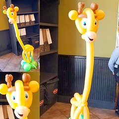 """This week's """"too cute Tuesday"""" sculpture is also teriffically tall! #giraffe  Atomic Balloon Company can make absolutely anything out of balloons, and that is no TALL tale!! Call, text, or email now! (480)385-9648 www.atomicballoons.com  #toocutetuesday # (Atomicballooncompany) Tags: partyentertainer balloonanimals clarkcountynv balloons balloonsculpture tuesdayvibes lasvegas cute enterprisenv partyentertainment lasvegaslocals amazing northlasvegas balloonartist toocutetuesday summerlinlv hendersonnv art vegas nevada lasvegasstrip creative balloonart partyballoons giraffe centennialhillsnv instalove champion party fun"""