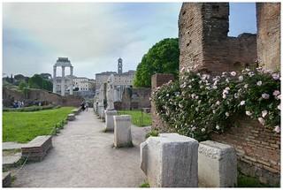 Vacanze romane ... passeggiando nei Fori Imperiali ...