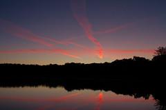 Sunrise in Sologne (Nolwenn Viveret) Tags: leverdesoleil paysage landscape photography photographie petitmatin etang sologne pond reflet lumière light reflexion sun sunrise