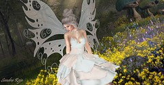 Hᴏᴡ ғʀᴀɢɪʟᴇ ᴡᴇ ᴀʀᴇ . . . (SandraReja) Tags: secondlife sl virtual fashion event lootbox vanillabae aurora dressaurora stripme butterfly fairy wings rare maitreya catwa bento outdoor besom hair andy