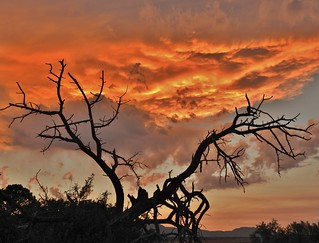 Fiery sunset (Explored)
