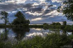 Beach Pond (BobbyFerkovich) Tags: pond beach clouds seattle golden gardens trees grass water sonya7riii