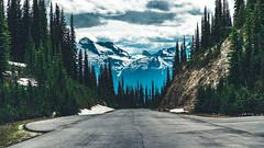 Mt. Revelstoke (CA) (Kenzo Que) Tags: canada revelstoke british columbia nature canon 1dx