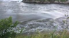 IMG_6994 (Julian W.) Tags: seaside reversingfalls current bridge