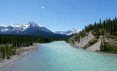 GLACIAL RIVER (Rob Patzke) Tags: water mountain blue glacier trees shore rocks pine snowcap river