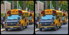 School bus parade 3-D / CrossEye / Stereoscopy / HDRaw (Stereotron) Tags: toronto to tdot hogtown thequeencity thebigsmoke torontonian schoolbus downtown north america canada province ontario streetphotography urban cross eye view xview crosseye pair free sidebyside sbs kreuzblick bildpaar 3d photo image stereo spatial stereophoto stereophotography stereoscopic stereoscopy stereotron threedimensional stereoview stereophotomaker photography picture raumbild twin canon eos 550d remote control synchron kitlens 1855mm 100v10f tonemapping hdr hdri raw