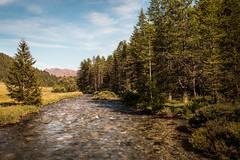La Clarée (morganelafond) Tags: montagnes mountains mountain montagne névache alpes alps foret forest courant arbre rivière river summer été