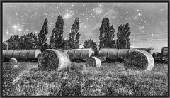 "Milkyway ("" Wiener Schule "") Tags: öbb oebb obb austria tankcars kesselwagen tankcar güterwagen eisenbahn railway railroad"