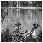 Le Pêcheur du Dimanche # 22 thumbnail