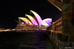 Sydney Opera House lit up for vivid festival of light (edzwa) Tags: dawespoint newsouthwales australia au nightphotography longexposure nightshot night sydney sydneyoperahouse vividsydney vivid