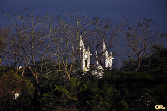 Towers and trees (Otacílio Rodrigues) Tags: igreja church torres towers árvores trees céu sky arquitetura architecture resende brasil oro galhos branches