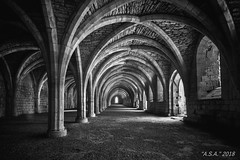 "Cellarium Infrared (""A.S.A."") Tags: cellarium fountain abbey northyorkshire infrared830nm britain architecture arches light shadow infrared sonya7rinfrared830nm sonyzeissvariotessarfe1635mmf4 wideangle blackwhite mono monochrome greyscale niksoftware silverefex asa2018"